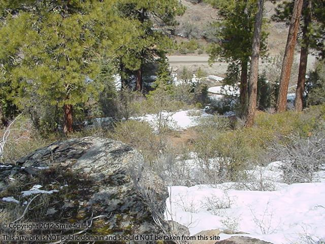 200469_watermarked_pic 120.jpg