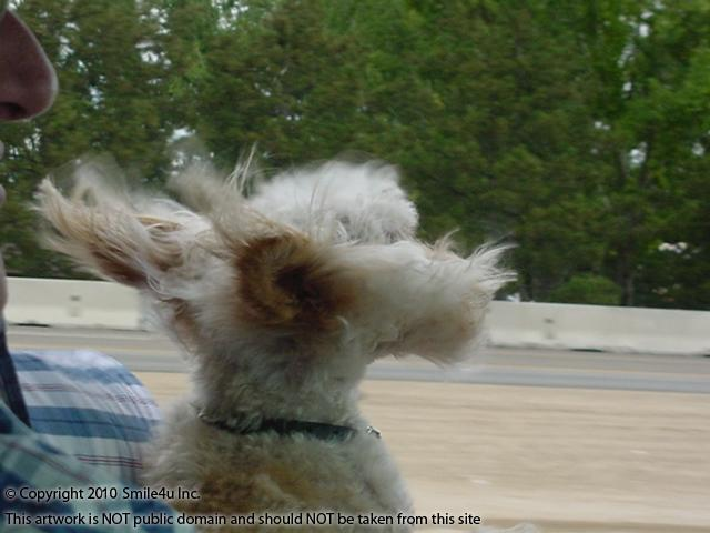272700_watermarked_pic 634.JPG