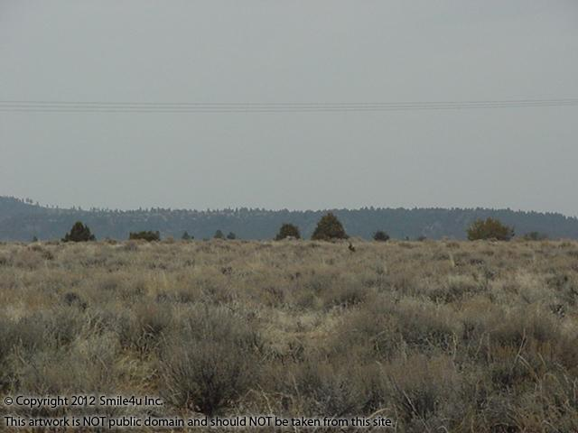 360321_watermarked_pic 287.jpg