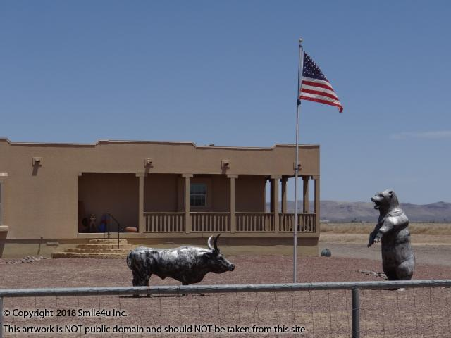 <B>The neighbor that sits 3 lots to the E sure has a yard full of beautiful metal animal sculptures and a proud American flag! Wow are they nicely done and it sure was fun to see for my first time! Located between Las Cruces and Deming, New Mexico, it sits about 4.5 miles SW of the exit onto Interstate 10 where there is a 3000 square foot convenience store and fuel station being built! Be sure and read the link to my blog about the economic growth in this area!<br />