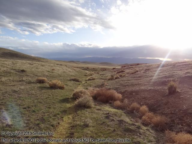 Stunning view to the west along intermittent stream from this 80 acres of land for sale with the Shoshone Mountain Range in the distance.