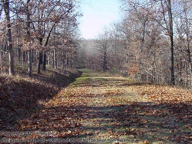 <B>There were beautiful fall colors in the big trees that covered this property for sale at Forbes Lake of the Ozarks! Its about 45 minutes W of Osage Beach and 2 hours SE of Kansas City, MO in Benton County. It