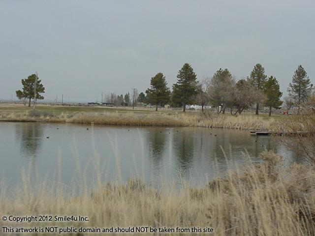 527972_watermarked_pic 313.jpg