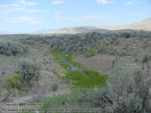 <B>Jackstone Creek, a Tributary to the Humboldt River, flows two blocks South of this property about 8 miles NE of Elko, Nevada in the Meadow Valley Ranchos ! There are no rights to pull water from the creek but it does come with rights to watch the little fish swimming and birds feeding! : )<br />