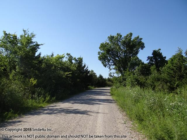 <B>Chickie Drive is an excellent graveled road leading along the lot for sale and there