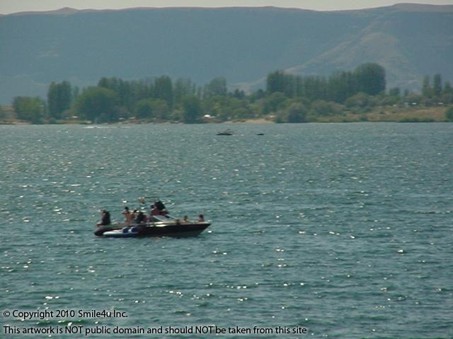 910210_watermarked_pic 589.JPG