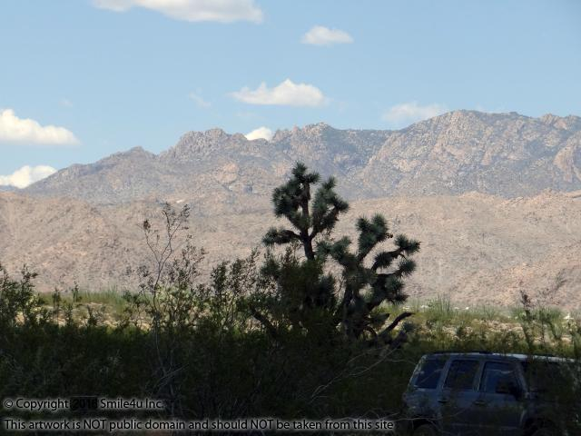 "<B>1.17 acres land for sale with pretty cactus sprinkled about in Lake Havasu Estates in Yucca, Arizona about an hour from Kingman and Lake Havasu! Beautiful views of the rugged Hualapai and McCracken Mountains with their unique character in their hillsides and peaks. <br /> <br /> Hualapai means ""People of the tall Pine"" in the native Hualapai Indian language. In the higher elevations you will find bear, elk, mule deer, and mountain lions among the Ponderosa Pines."