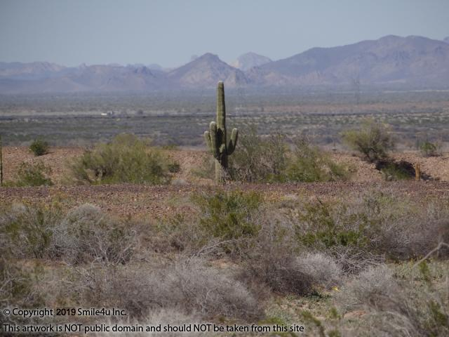 Cheap Land For Sale Check Out Our Listings | Smile4uinc com